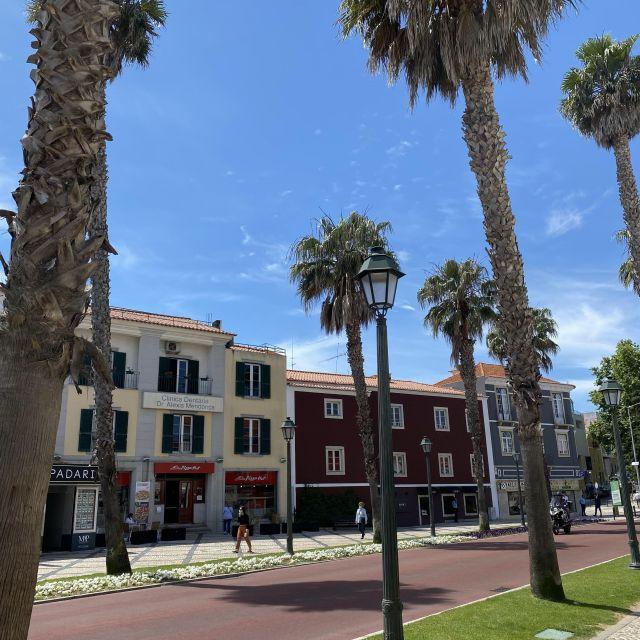 Von Palmen gesäumte rote Straße.