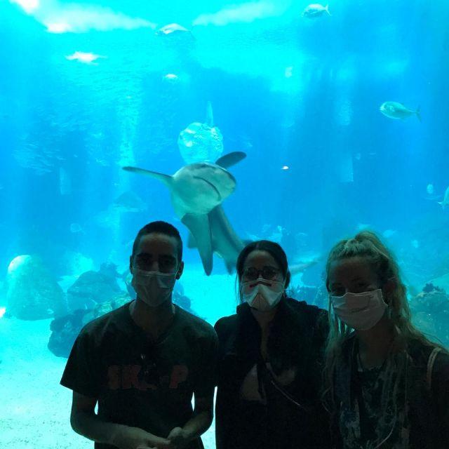 Zwei Frauen und ein Mann vor einem großen Aquarium mit Hai.
