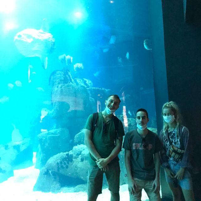 Zwei Männer und eine Frau vor großem Aquarium.