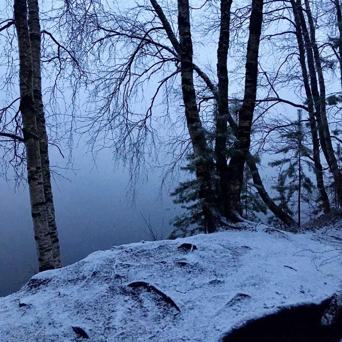 Mitte Mai - leichter Schneefall #springinfinland 🌲  #erlebees…