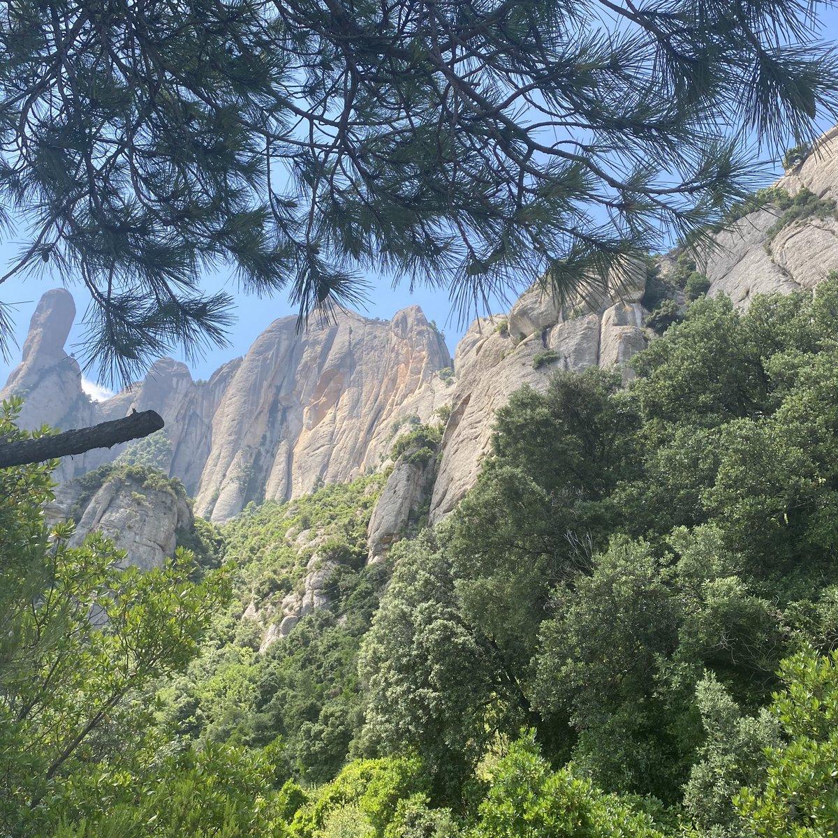 Endlich wieder raus aus der Stadt und auf in die Natur. Auf den Montserrat kann…
