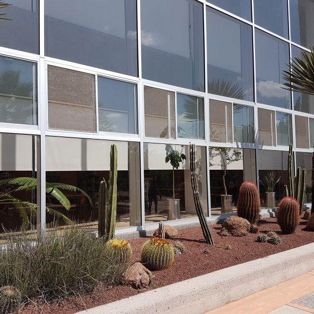 Gebäudefront mit verschiedenen Kakteenarten