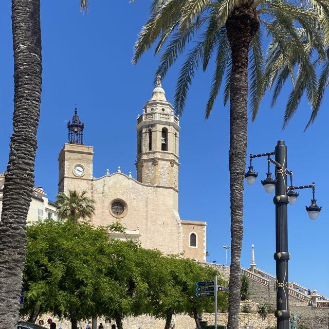 Palmen mit blauem Himmel im Hintergrund.