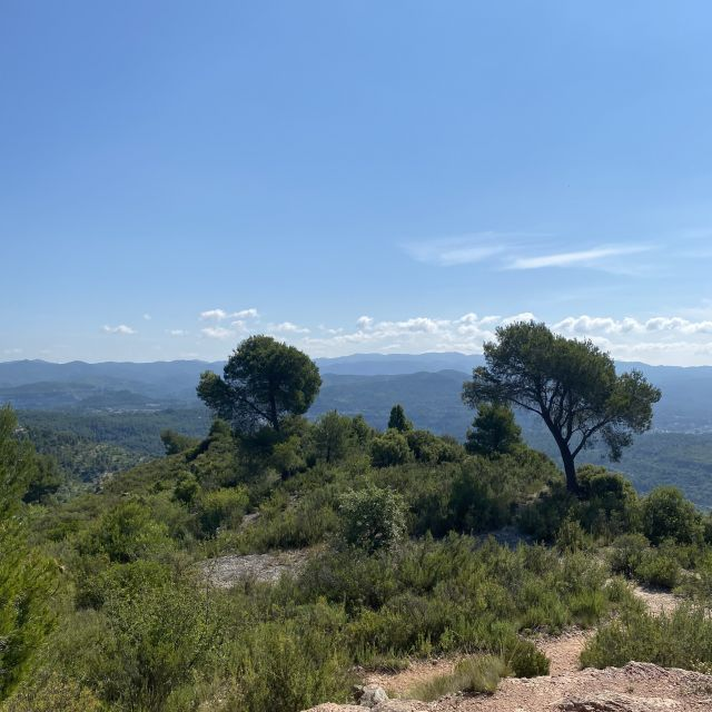 Ausblick über eine typische spanische Landschaft.