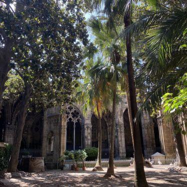 Der Kreuzgang der Kathedrale von Barcelona ist wie eine kleine Oase mitten in…