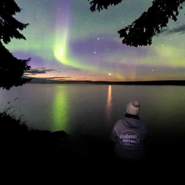 Vanessa sitzt am Ufer eines Sees und schaut auf den Sternenhimmel, durch den die Nordlichter grün und lila tanzen.