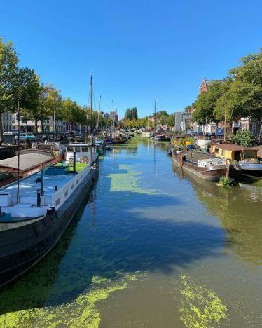 Man sieht eine Gracht. Es ist Sommer und die Gracht ist durch Entengrütze grünlich gefärbt. Links und rechts sieht man Schiffe.