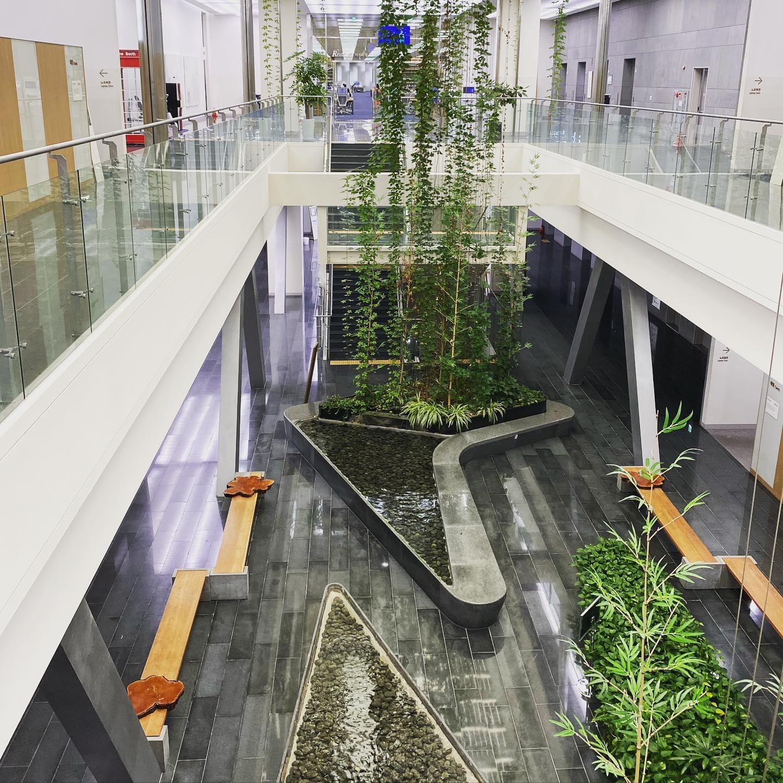 Mich beeindruckt besonders die moderne Architektur der Universitätsbibliothek.…