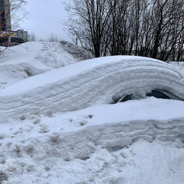 Ein bis übers Dach zugeschneites Auto.