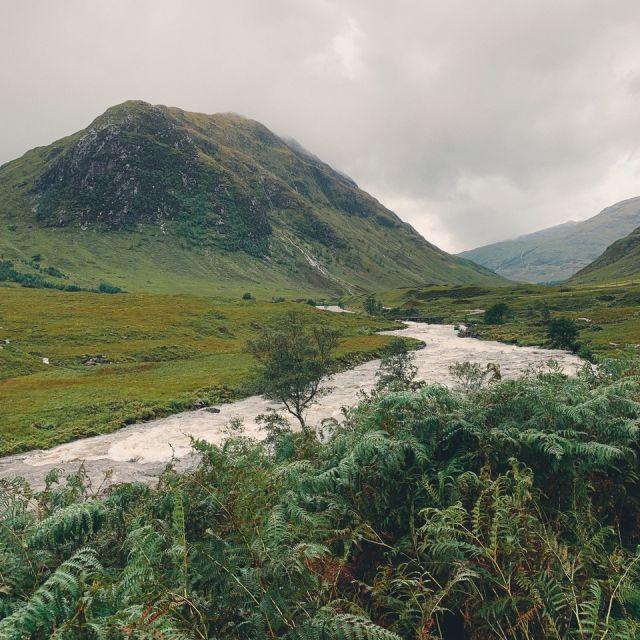 Grünbewachsener Berg, Fluss und Farn im Vordergrund
