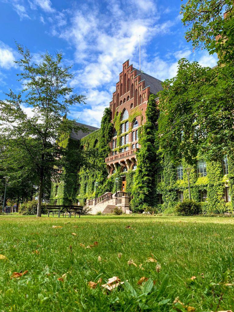 Grün hinter dem Öresund – Meine Mission in Lund