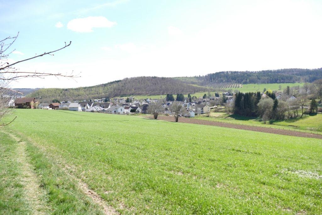 Waldweg und Grüne Wiese. Im Hintergrund das Dorf Fellinghausen.