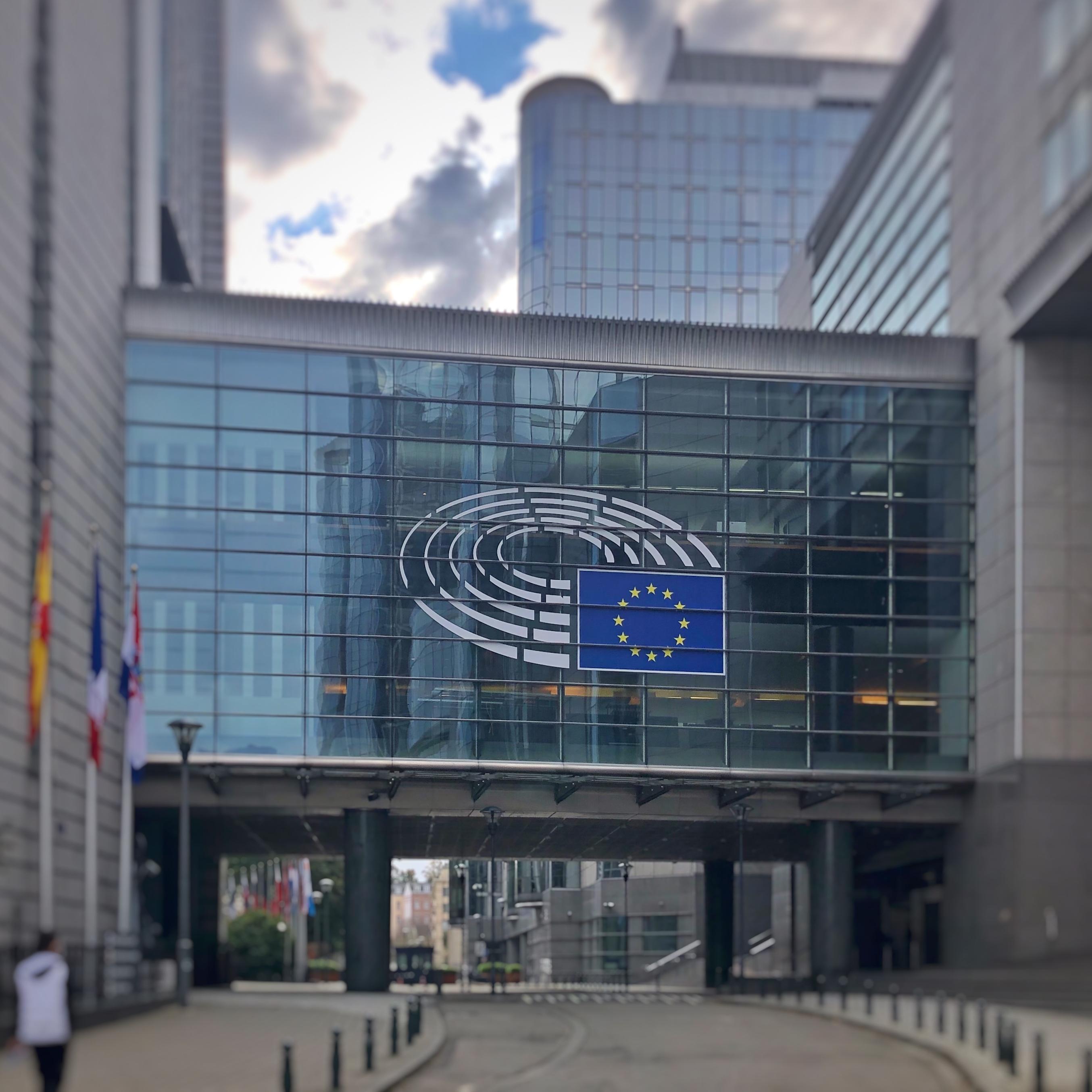 Mein Weg ins Europäische Parlament