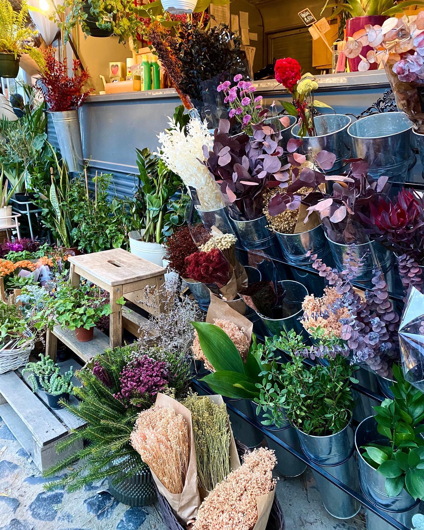💐🌞 #erlebees #blumenparadies #flor #lisboa #lxfactorylisboa