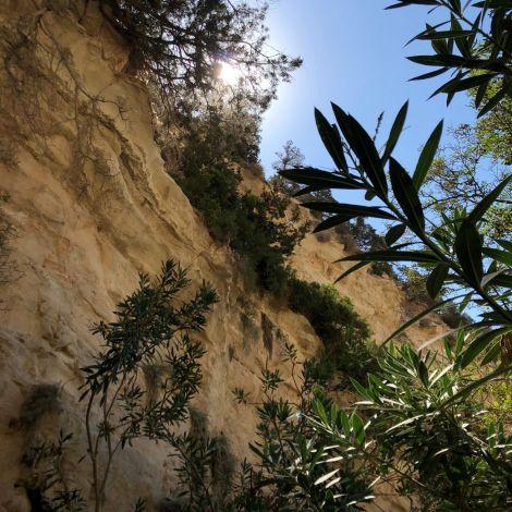 Über zum Teil 30 Meter hohe Kalksteinwände prägen die im Südwesten Zyperns…
