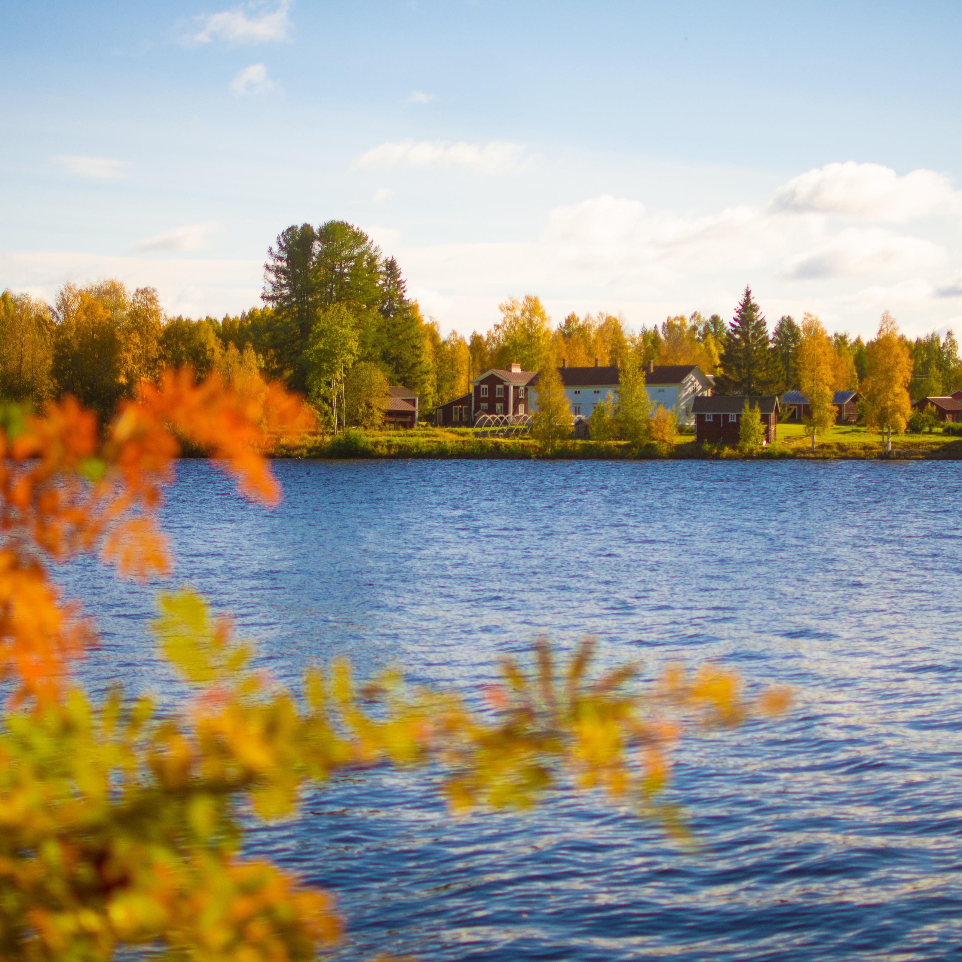 Von Gold bis Grau: Der Herbst in Rovaniemi
