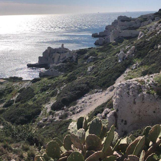 Die Inseln gleich vor der Küste von Marseille.
