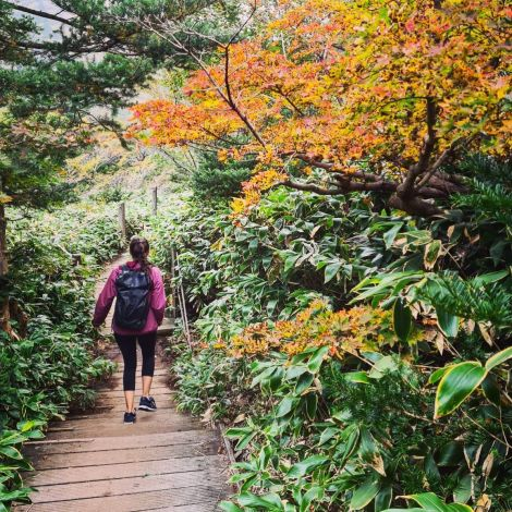 [Hiking culture in Korea] Hiking is extremely popular here, regardless of age…