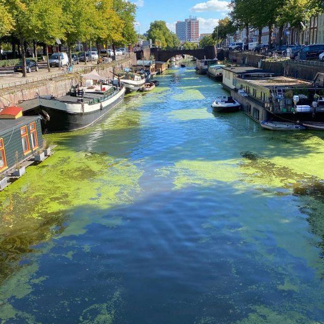 Man siebt einen Kanal und Boote. Das Wasser ist grünlich gefärbt.