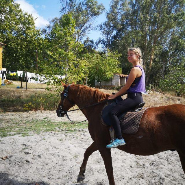 Ich reite auf einem braunen Pferd.