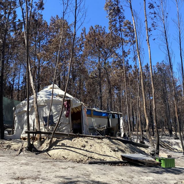 Jurte im verbrannten Wald.