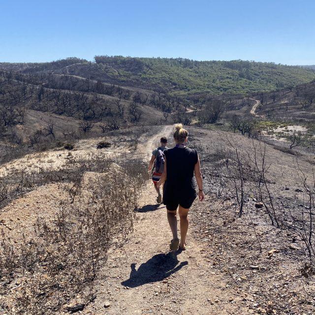 Zwei Menschen laufen durch verbranntes Land.