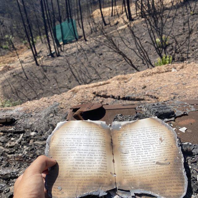 Verbranntes Buch.