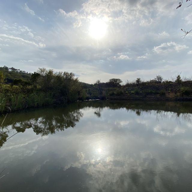 Spiegelglatter See.