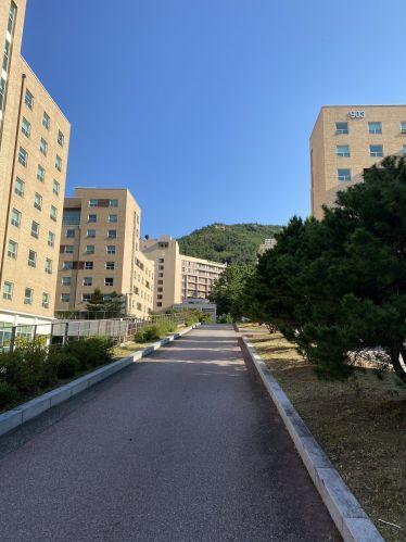 Mehrere sandfarbene Gebäude und ein Berg im Hintergrund