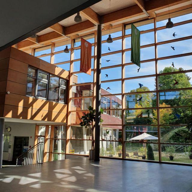 Dank einer modernen Bauweise, ist das gesamte Gebäude lichtdurchflutet. Die Sonne Scheind durch die Fensterfront in den Eingangsbereich.