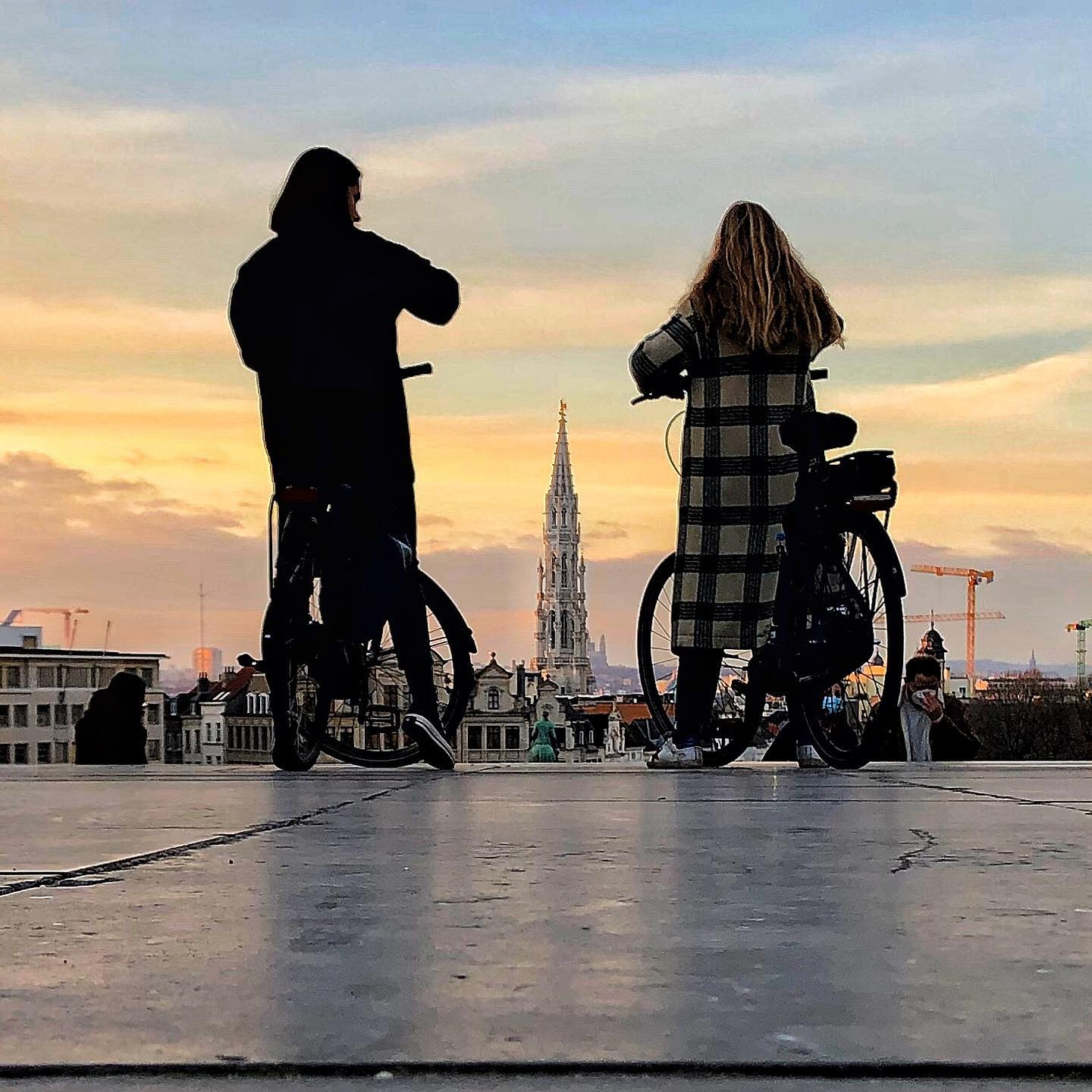 Sunsets in Brussels  #erlebees