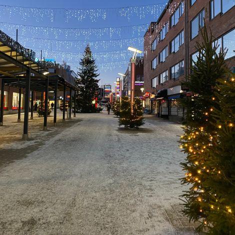 Eine mit Weihnachtsbäumen geschmückte Straße