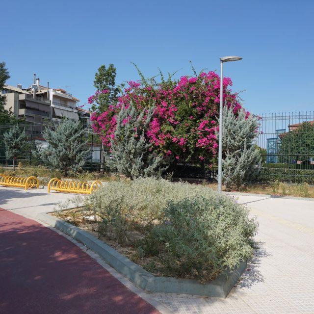Im Vordergrund befindet sich ein Fahrradweg. Im Hintergrund sind gelbe Fahrradständer zu sehen und Büsche mit rosa Blüten.