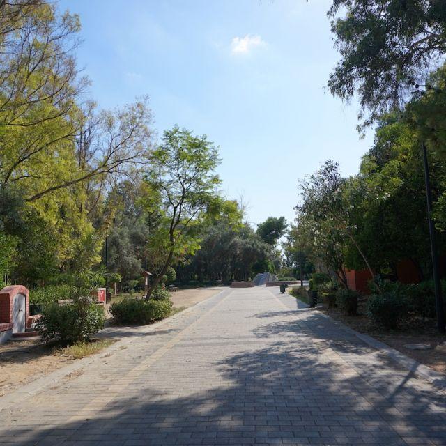 Im Vordergrund ist ein leerer Betonweg zu sehen. Auf der linken und rechten Seite befinden sich grüne Bäume und Büsche.
