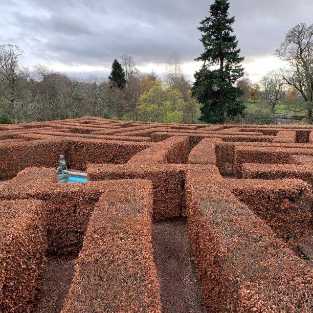 Labyrinth aus Hecken, deren Blätter rot gefärbt sind