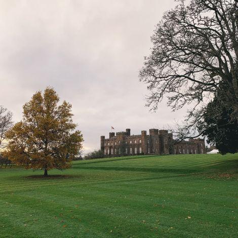 Grüner Rasen, herbstlicher Baum und im Hintergrund ein steinerner Palast