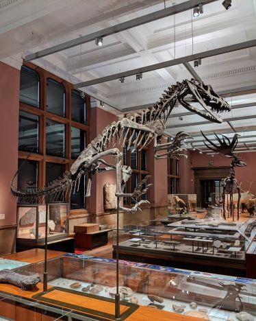 Nochmal wie ein Kind fühlen kann man sich im Kelvingrove Museum. Es ist…