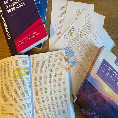 Auf dem Bild sieht man Lernzettel zu meinem Unterrichtsfach International and European Law sowie dazugehörige Bücher und Gesetzestexte.