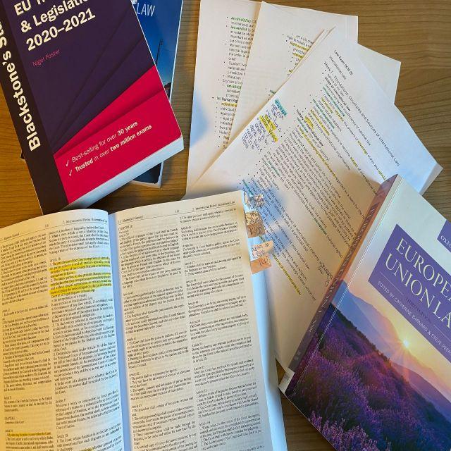 Internationale Beziehungen – das studiere ich!