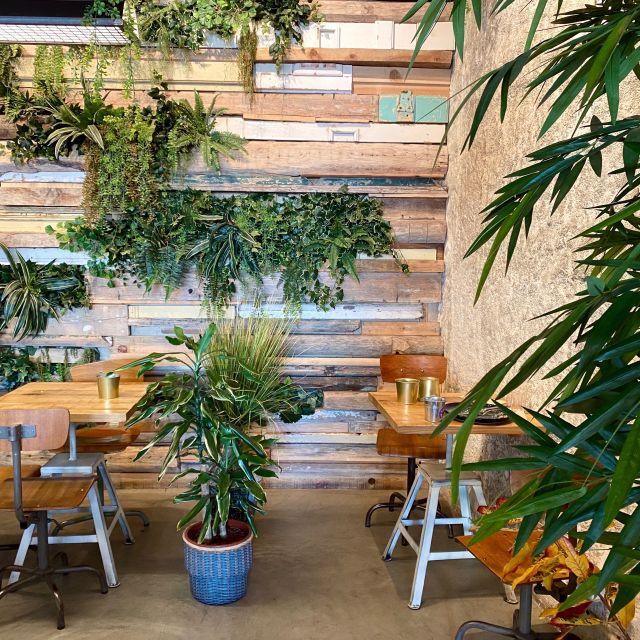 Ein kleines Café voller grüner Pflanzen und alten Holzstühlen.