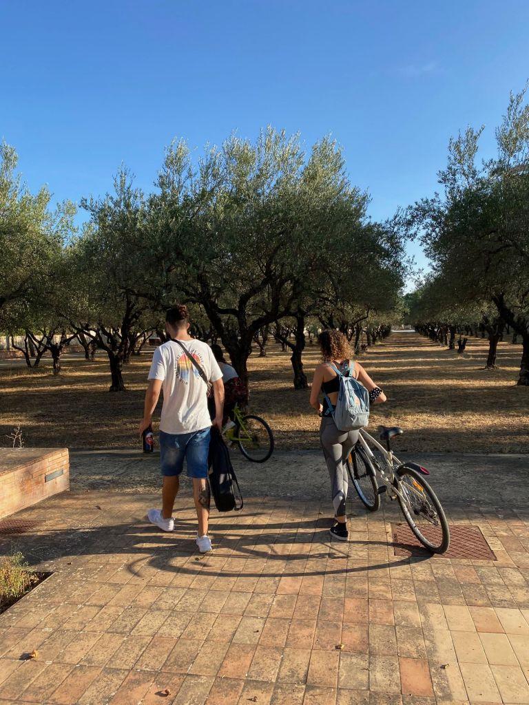 Junger Mann und zwei junge Damen mit Fahrrädern von Hinten vor Bäumen.