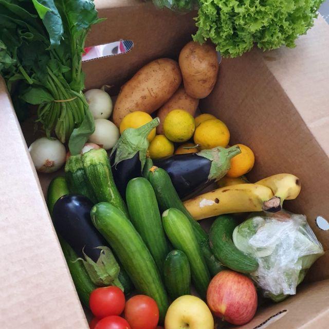 Die Rescued Box gefüllt mit den verschiedensten Sorten Obst und Gemüse.