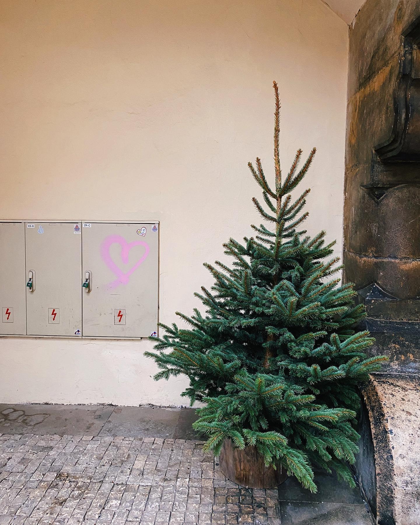 Frohe Weihnachten, Merry Christmas, Feliz Navidad und Veselé Vánoce aus…