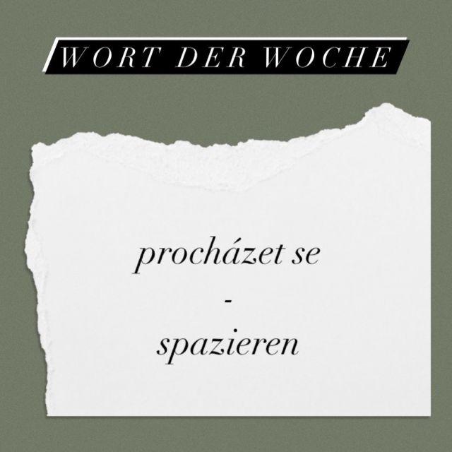 Info-Tafel mit dem tschechischen Wort für spazieren (procházet se)