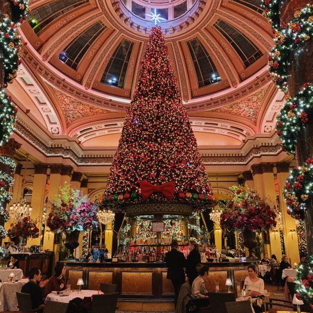 Pompöser Tannenbaum auf einer Bar, weihnachtlich geschmückt, Restaurant