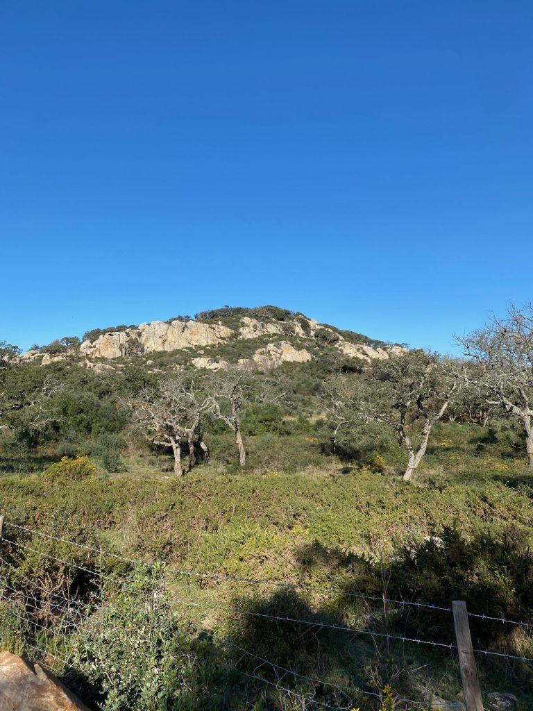 Ein hoher beiger Berg mit grünen Bäumen aus der Ferne.
