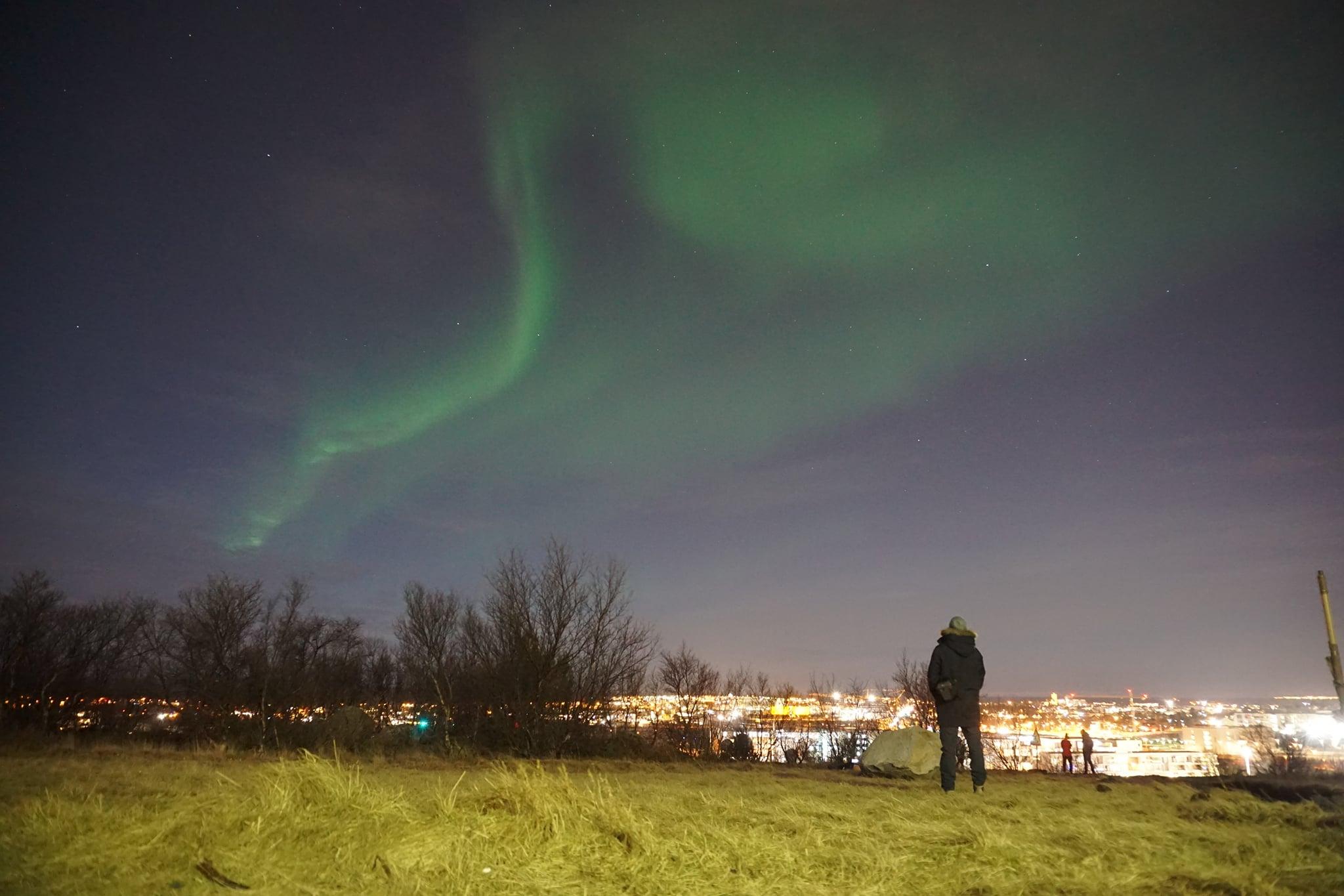 Gestern Abend hatte ich Glück. Ein klarer Himmel über Reykjavik ermöglichte…