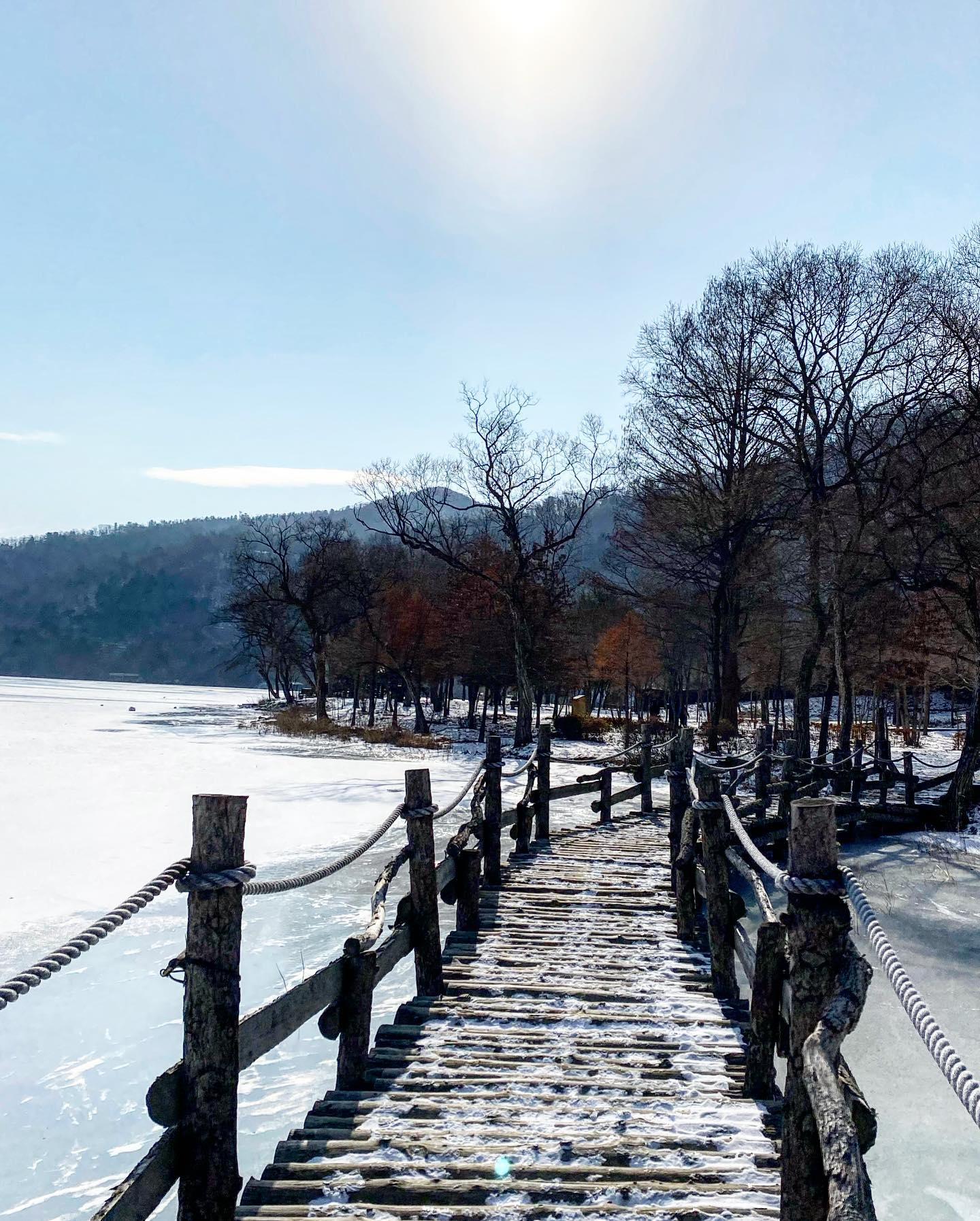 Just two hours from Seoul, Nami Island [남이섬] in Gapyeong,…