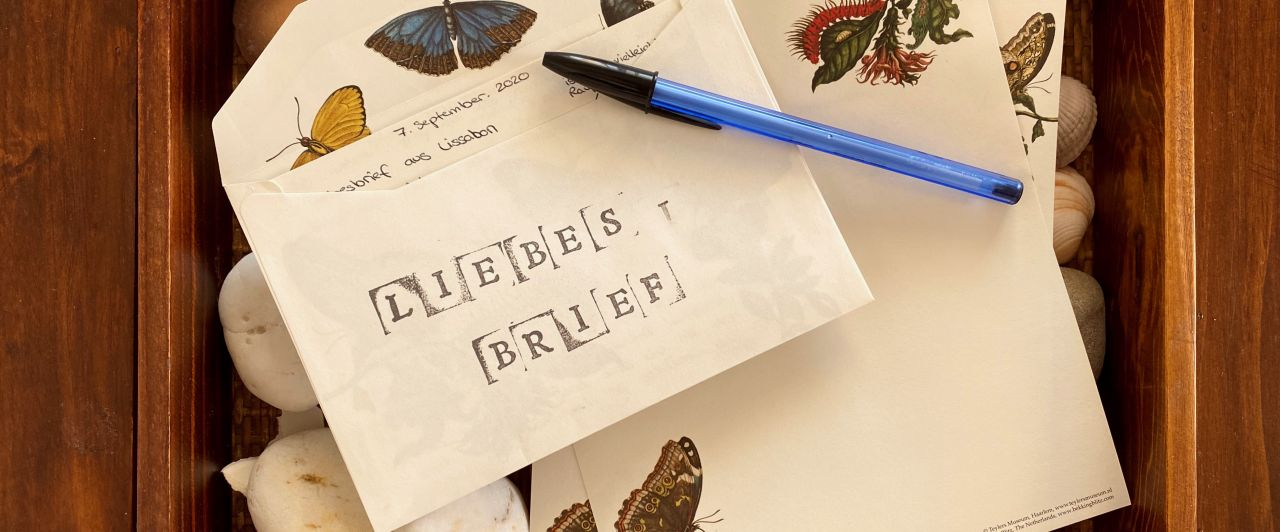 """Ein Briefset mit den Worten """"Liebesbrief"""" liegt auf einer Schale mit Muscheln."""