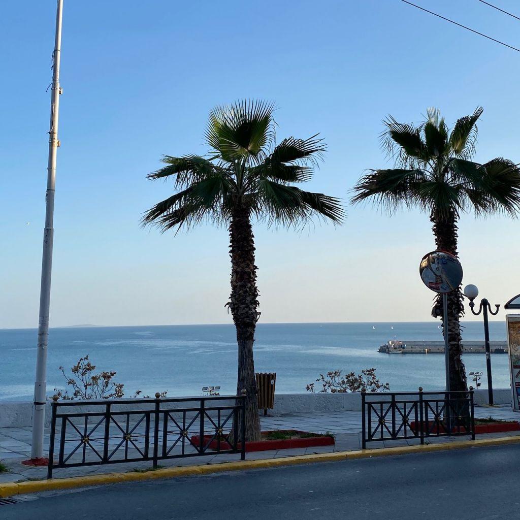 In der Mitte des Bildes sind zwei eingepflanzte große Palmen zu sehen. Die Palmen ragen in den Himmel und im Hintergrund ist das Meer zu sehen.